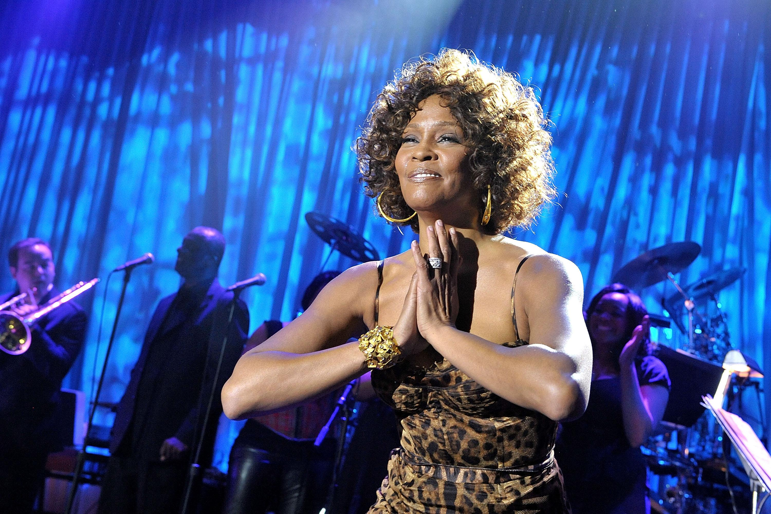 51st Annual GRAMMY Awards - Salute To Icons: Clive Davis - Show