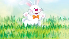 Easter Bunny Enjoying the Nature