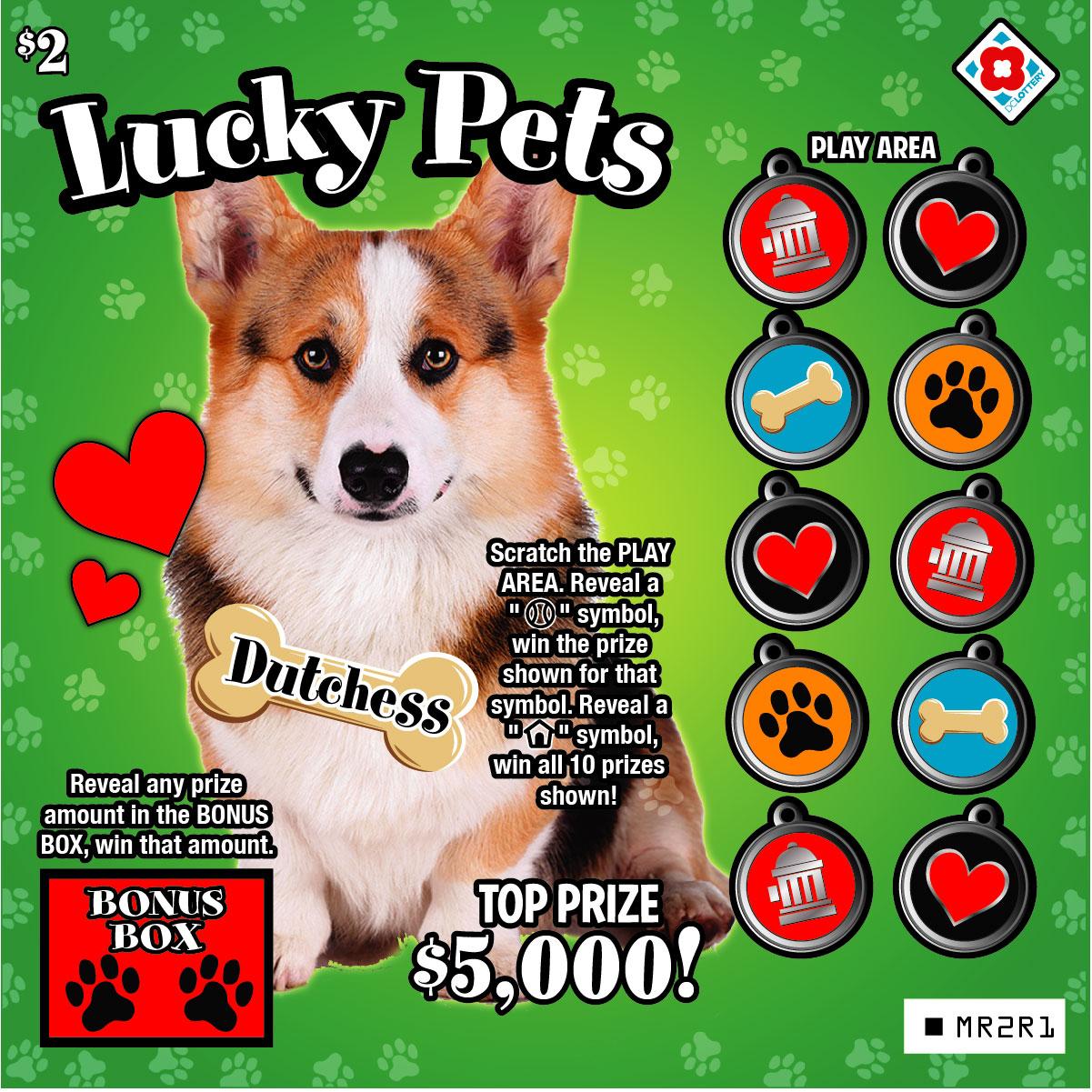 DC Lottery Pet Scratcher